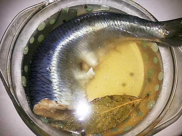 Засолка селедки в рассоле целиком рецепт