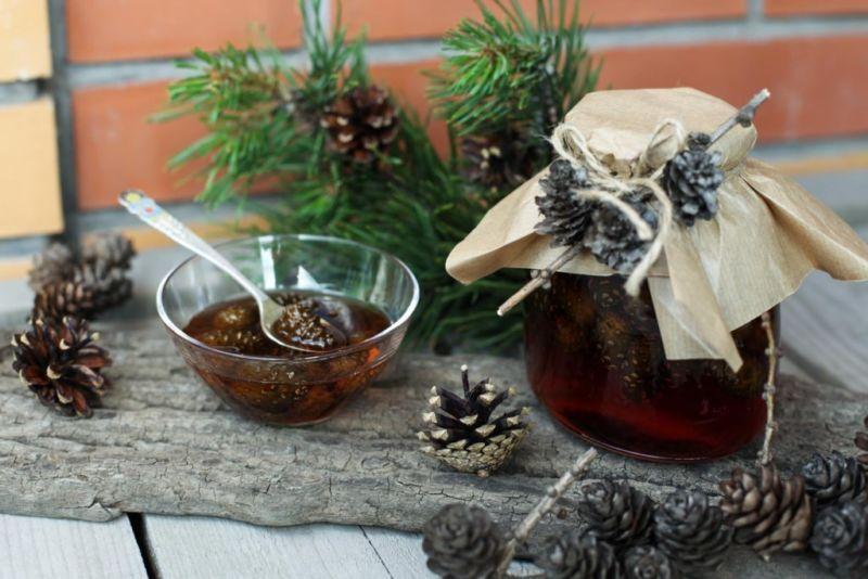 Варенье из сосновых шишек как готовить