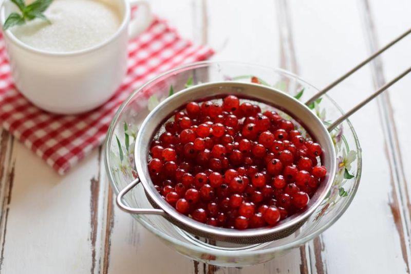 Варенье из красной смородины: 9 простых рецептов на зиму этап 4