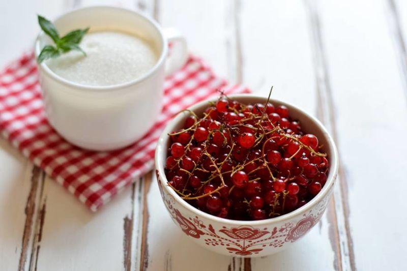 Варенье из красной смородины: 9 простых рецептов на зиму этап 2