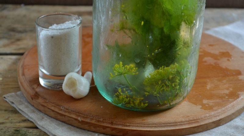 Огурцы соленые на зиму — 6 рецептов хрустящих огурцов в банках этап 9