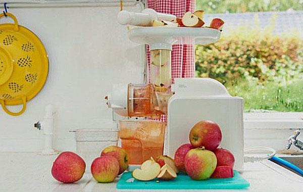 Вино из яблок в домашних условиях — простые рецепты приготовления яблочного вина этап 14