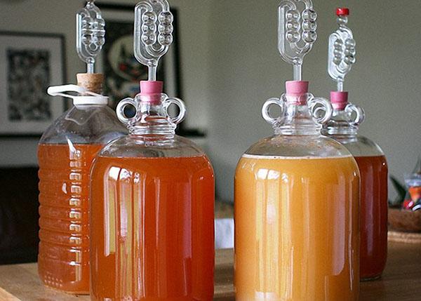 Вино из яблок в домашних условиях — простые рецепты приготовления яблочного вина этап 18
