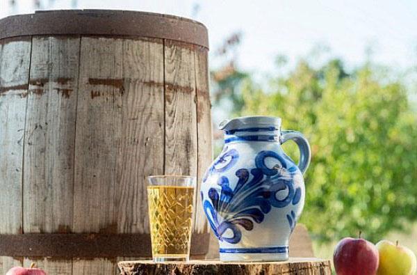 Вино из яблок в домашних условиях — простые рецепты приготовления яблочного вина этап 19