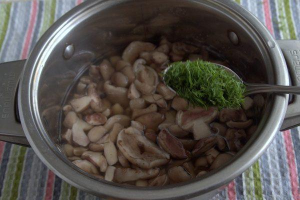 Маринованные маслята на зиму. Топ 12 самых вкусных и простых рецептов этап 21