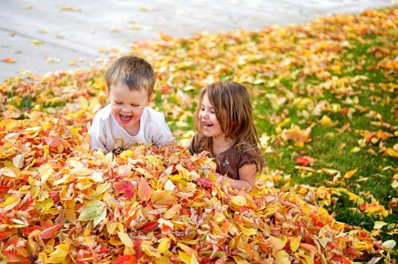Стихи про осень: короткие и красивые стихотворения об осени для дошкольников этап 2