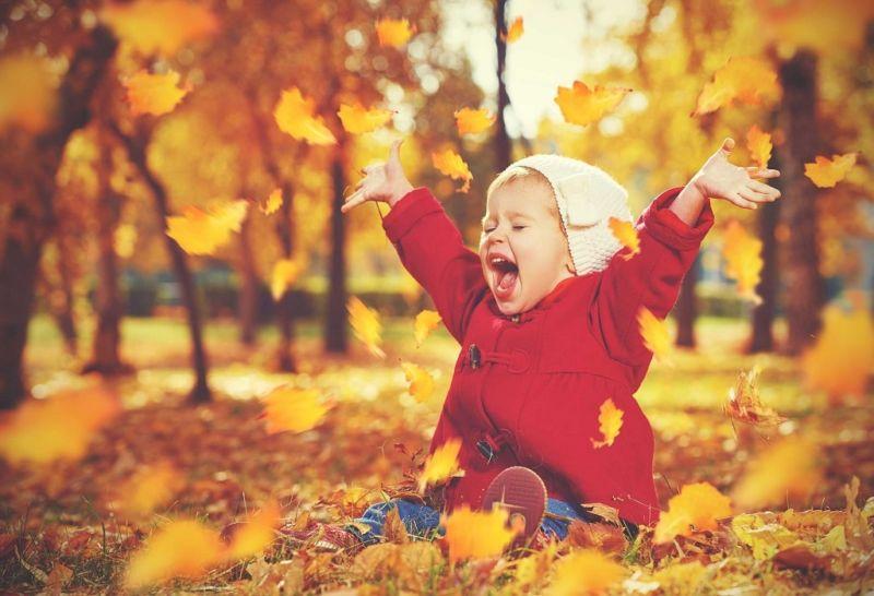 Стихи про осень: короткие и красивые стихотворения об осени для дошкольников этап 4
