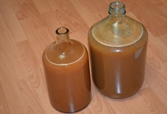 Вино из яблок в домашних условиях — простые рецепты приготовления яблочного вина этап 4