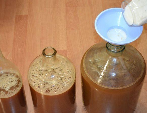 Вино из яблок в домашних условиях — простые рецепты приготовления яблочного вина этап 5