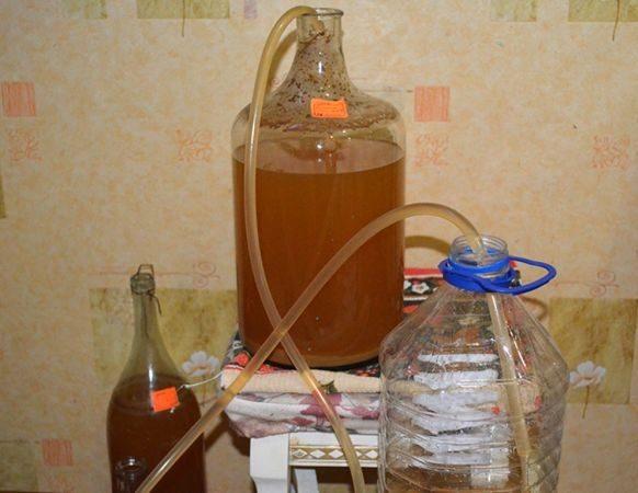 Вино из яблок в домашних условиях — простые рецепты приготовления яблочного вина этап 8