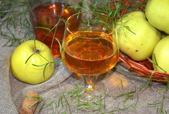 Вино из яблок в домашних условиях — простые рецепты приготовления яблочного вина этап 11