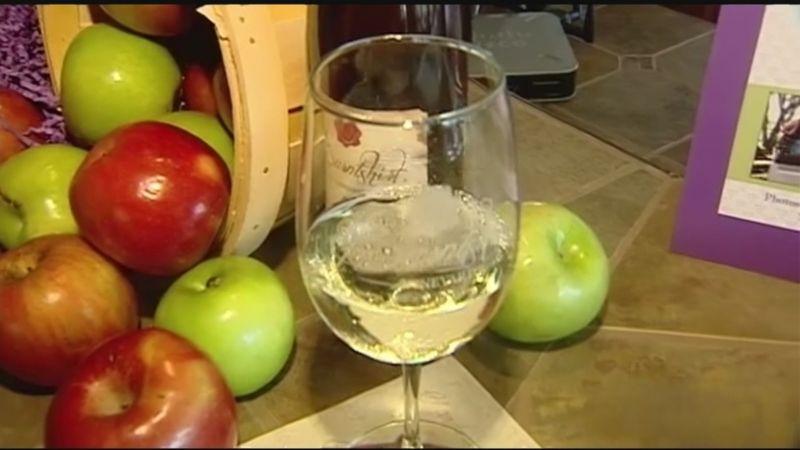 Вино из яблок в домашних условиях — простые рецепты приготовления яблочного вина этап 36