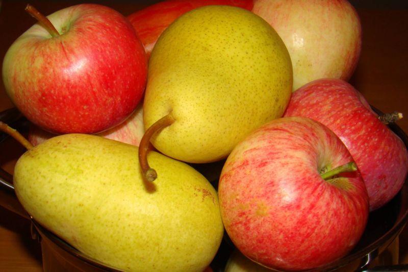 Вино из яблок в домашних условиях — простые рецепты приготовления яблочного вина этап 31
