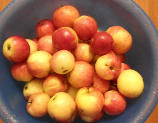 Яблочное пюре — 8 самых простых рецептов на зиму этап 12