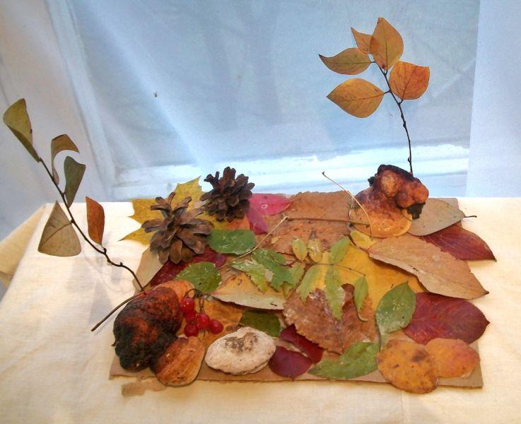Поделки из природного материала на тему осень в школу и для детского сада. 66 интересных и оригинальных идей этап 59