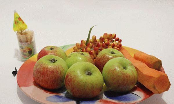 Поделки из овощей и фруктов своими руками для выставки. Самые красивые осенние поделки в детский сад и в школу этап 61