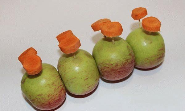 Поделки из овощей и фруктов своими руками для выставки. Самые красивые осенние поделки в детский сад и в школу этап 63