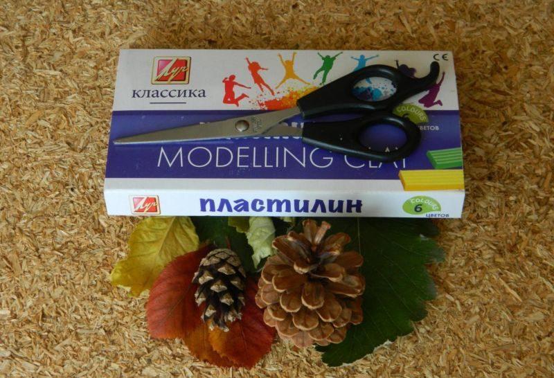 Поделки из природного материала на тему осень в школу и для детского сада. 66 интересных и оригинальных идей этап 67