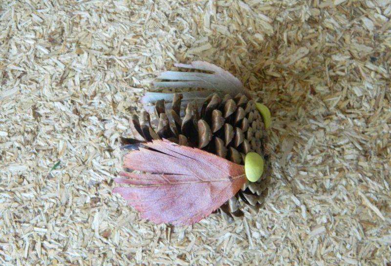 Поделки из природного материала на тему осень в школу и для детского сада. 66 интересных и оригинальных идей этап 69