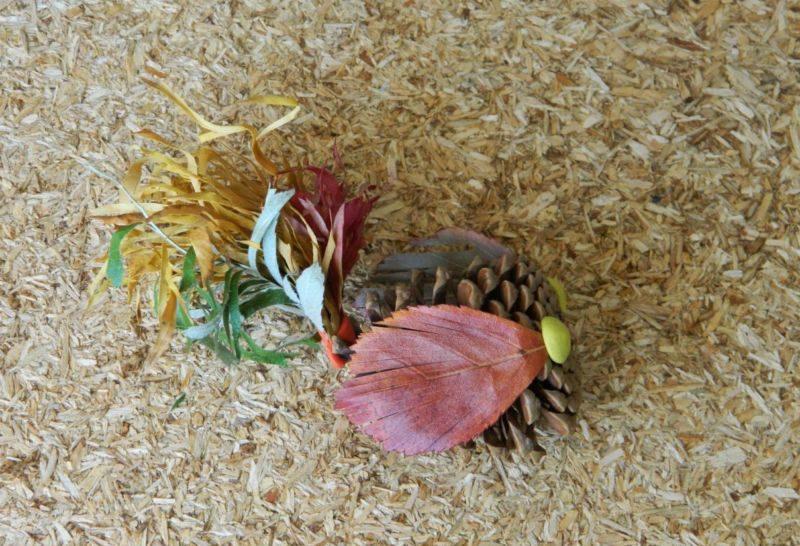 Поделки из природного материала на тему осень в школу и для детского сада. 66 интересных и оригинальных идей этап 71