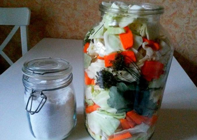 Квашеная капуста быстрого приготовления — 8 рецептов вкусной квашеной капусты этап 24