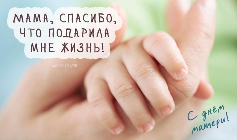 С Днем Матери! Красивые картинки и поздравления этап 2