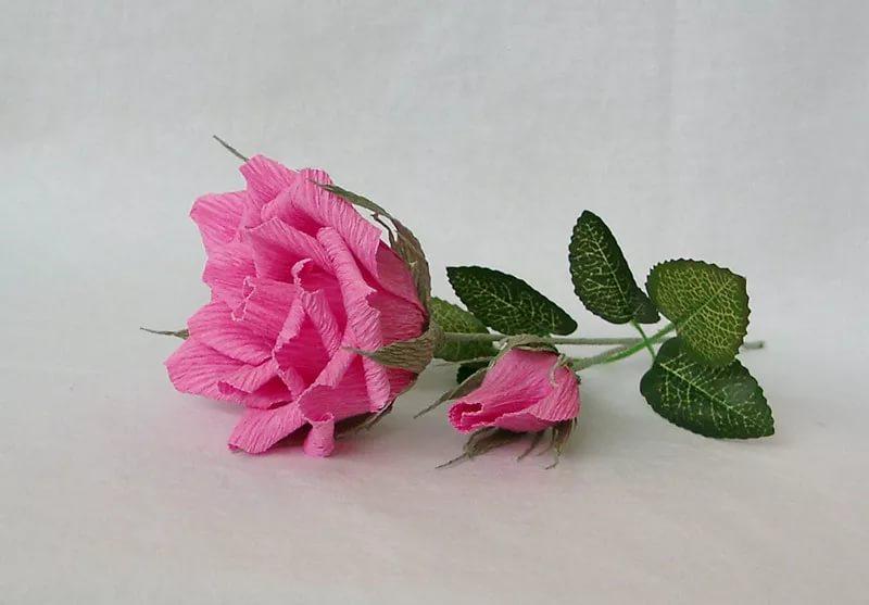 Розы из гофрированной бумаги своими руками: пошаговые инструкции для начинающих этап 1