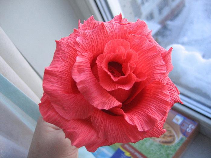 Розы из гофрированной бумаги своими руками: пошаговые инструкции для начинающих этап 2