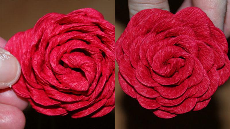 Розы из гофрированной бумаги своими руками: пошаговые инструкции для начинающих этап 26