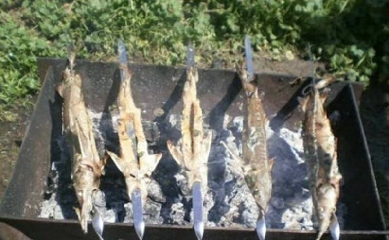 Шашлык из рыбы на мангале. Какую рыбу выбрать и как приготовить шашлык из рыбы этап 14
