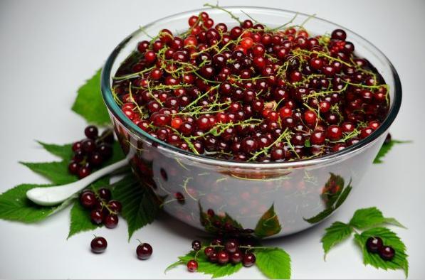 Компот из красной смородины на зиму: 6 рецептов приготовления компота этап 31