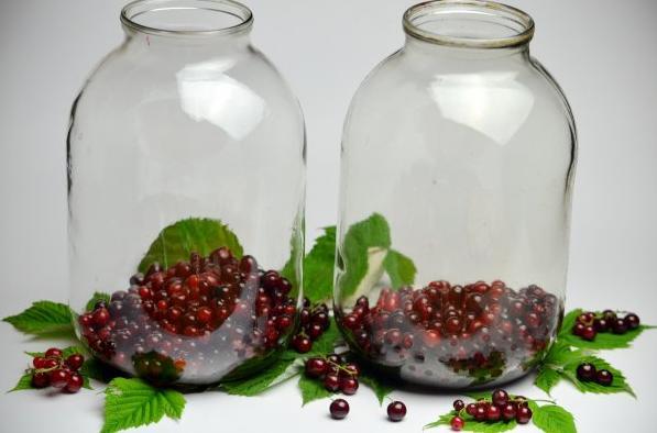 Компот из красной смородины на зиму: 6 рецептов приготовления компота этап 32