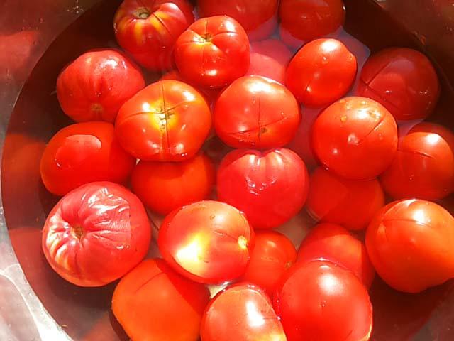 Огурцы в томате на зиму — 6 обалденных рецептов этап 17