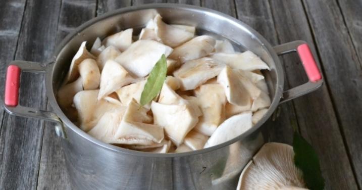 Грузди, соленые горячим способом в банках на зиму по рецептам быстрого приготовления этап 6