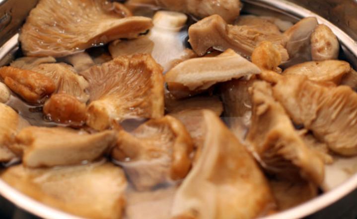 Грузди, соленые горячим способом в банках на зиму по рецептам быстрого приготовления этап 16