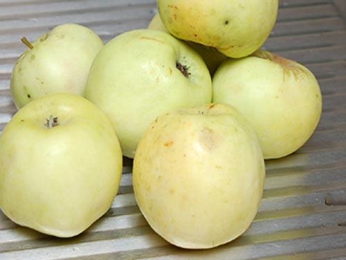Компот из винограда на зиму — 5 рецептов на 3 литровую банку этап 5