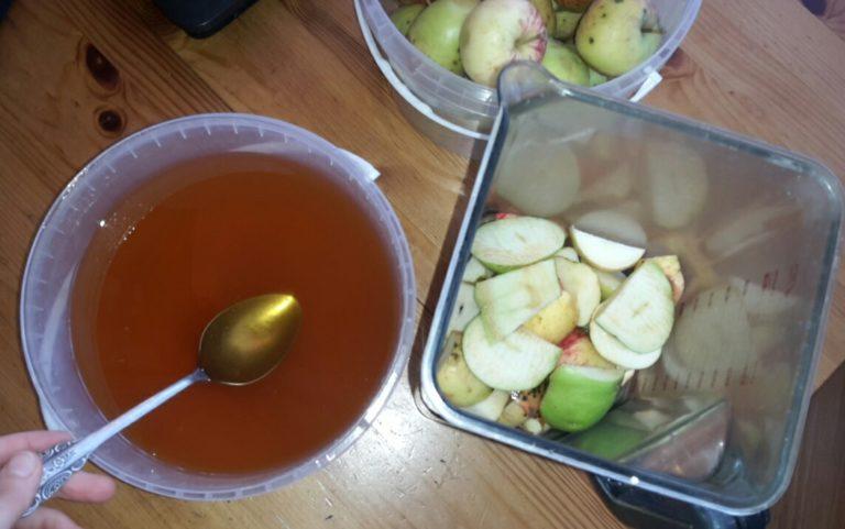Пастила из яблок в домашних условиях — 7 простых рецептов этап 19
