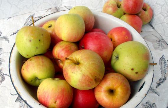 Пастила из яблок в домашних условиях — 7 простых рецептов этап 2