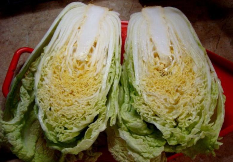 Маринованная капуста пилюска — 6 рецептов быстрого приготовления вкусной капусты этап 25