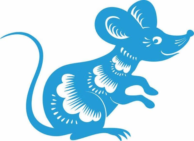 Крыса (мышь) своими руками на Новый год — поделки в виде символа года 2020 из разных материалов этап 120
