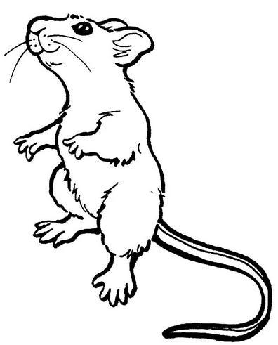 Крыса (мышь) своими руками на Новый год — поделки в виде символа года 2020 из разных материалов этап 112