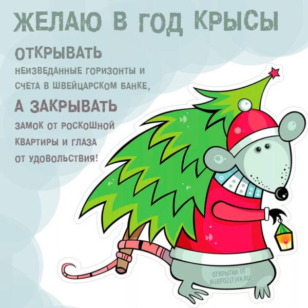 С Новым 2020 годом! С Годом Белой Металлической Крысы! этап 2