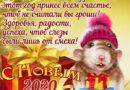 С Новым 2020 годом! С Годом Белой Металлической Крысы!