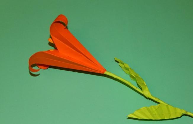 Цветы из бумаги — схемы и шаблоны для создания бумажных цветов этап 126