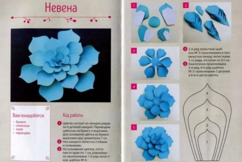Цветы из бумаги — схемы и шаблоны для создания бумажных цветов этап 9
