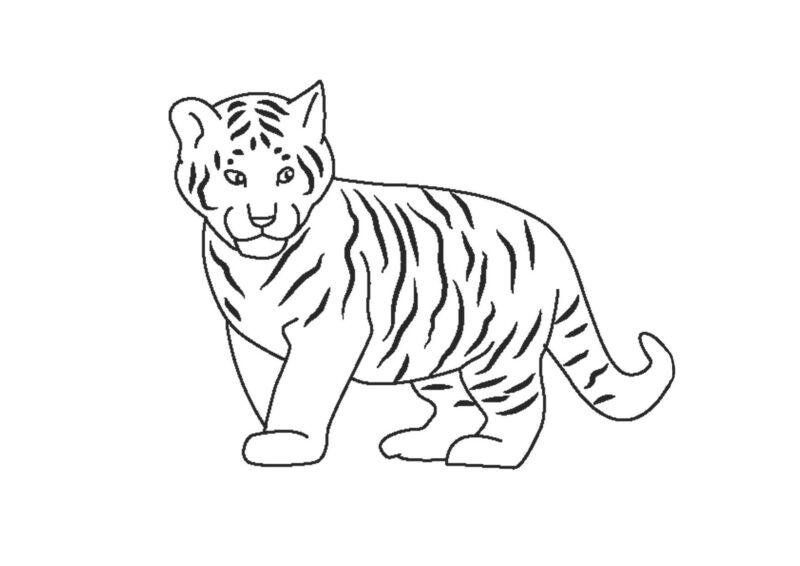 Трафареты тигра на окна для вырезания из бумаги на Новый год 2022 этап 19