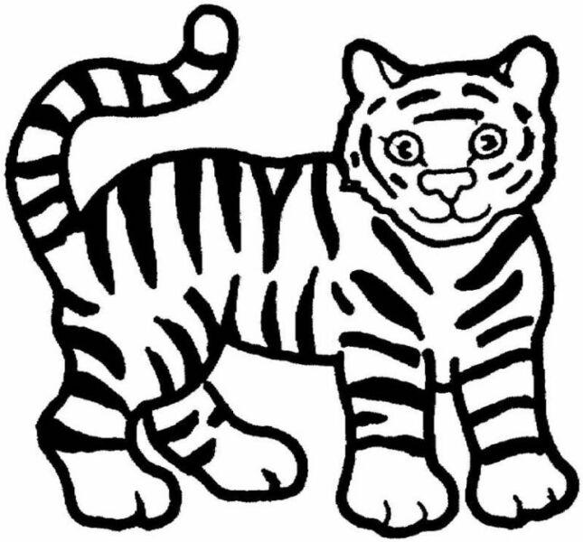 Трафареты тигра на окна для вырезания из бумаги на Новый год 2022 этап 17