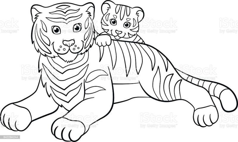 Трафареты тигра на окна для вырезания из бумаги на Новый год 2022 этап 15