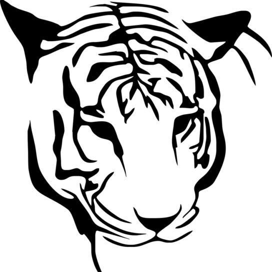Трафареты тигра на окна для вырезания из бумаги на Новый год 2022 этап 7